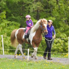 Leadline Horse Class at Solheimar Farm 2019 Firmakeppni