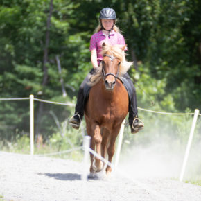 Intermediate Horse Tolt at Solheimar Farm 2019 Open Sanctioned Show