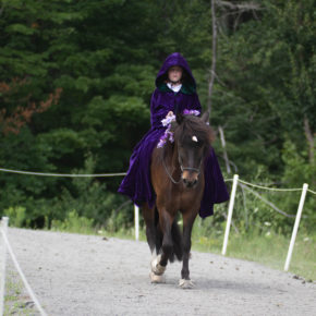 Musical Harmony/ Youth Costume Class at Solheimar Farm 2019 Open Sanctioned Show