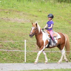 Youth Mix In A Bag at Solheimar Farm 2019 Open Sanctioned Show